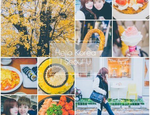 旅遊 ♥ 韓國首爾自由行。十天九夜之旅 行前準備+總行程規劃篇 ♫