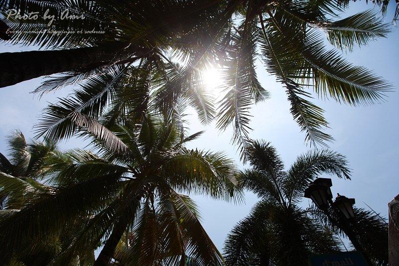 130309 ♥ 天堂般的Boracay‧長灘島Day5 ♫ 美麗假期的尾巴